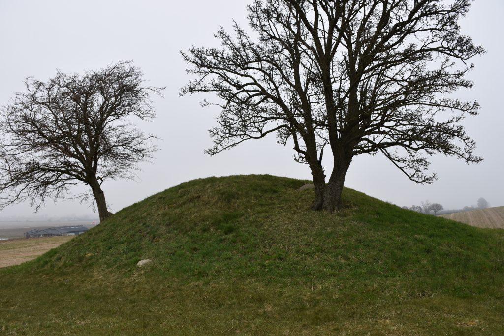 Jættestuen i Nr. Frenderup. Foto Søren Faaborg Nielsen