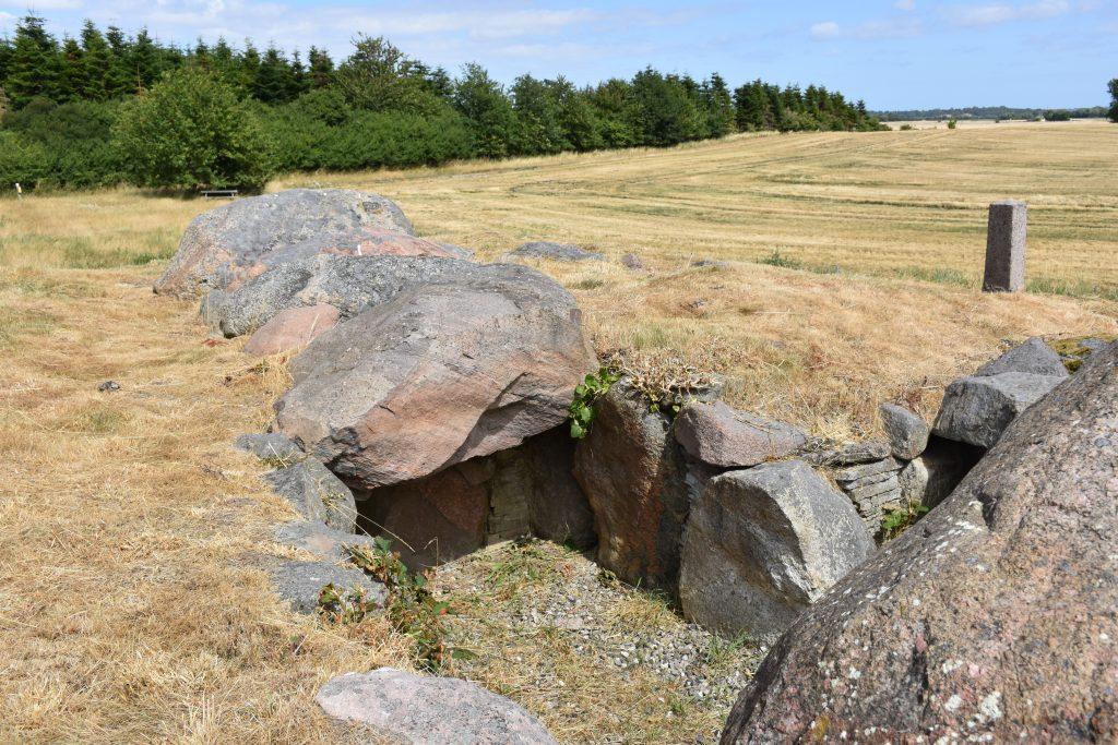 Svinø Måneshøj. Foto Søren Faaborg Nielsen